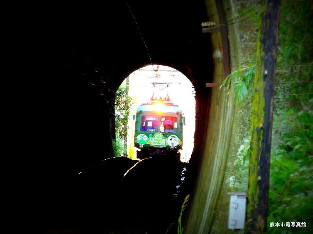 熊本城から北に連なる京町台地のトンネルに差し掛かる青ガエル。このトンネルは西区と北区の境界になります。