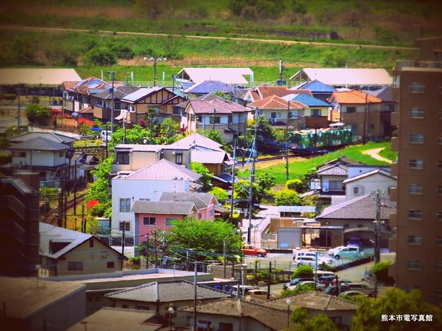 立田山配水池から眺めた坪井川公園駅と青ガエル。