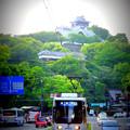 Photos: 熊本城と市電。