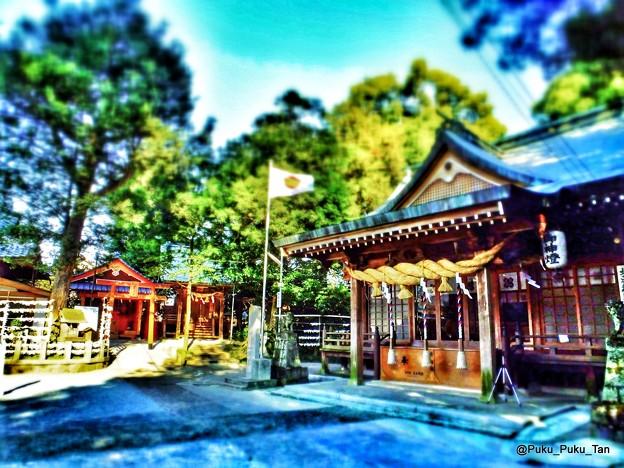 立田阿蘇三之宮神社。