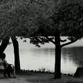 秋が始まるよ~♪