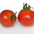 仲良しトマト