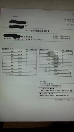 アレルゲン検査結果1