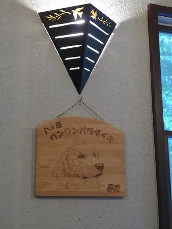 (15)八ヶ岳ワンパラ