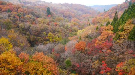 泉水橋の紅葉