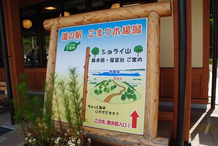 mitinoeki_kibagata01