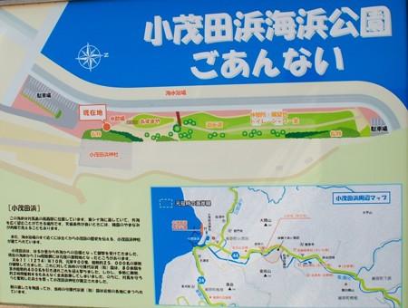komodahama_tusima_map