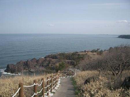 akita_misaki1