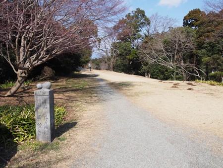 isigakiyamaitiyajou42