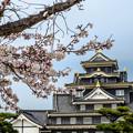 写真: 名城岡山城