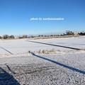 写真: 雪景色11