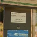 DSC_6608
