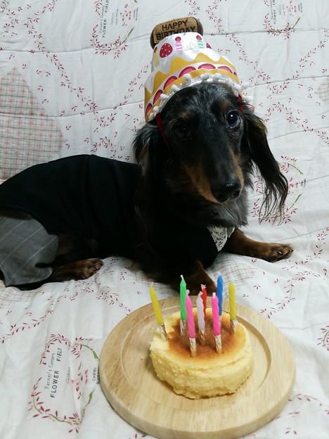 桜爾~お誕生日おめでとう♪