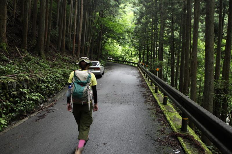 IMG_7263川苔山登山