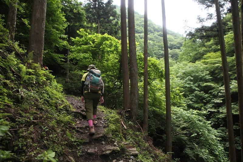 IMG_7277川苔山登山