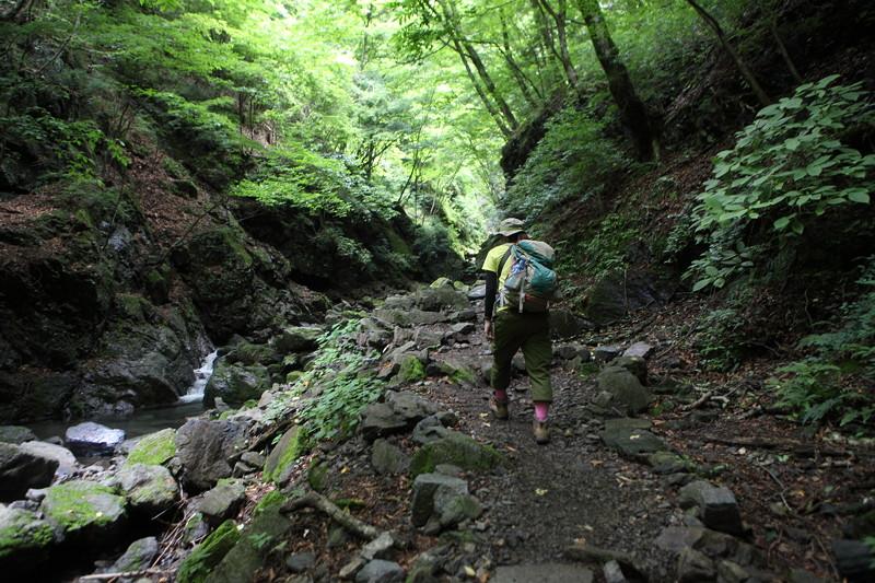 IMG_7314川苔山登山