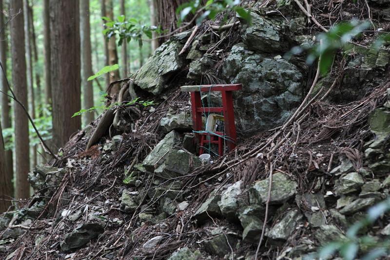 IMG_7341川苔山登山