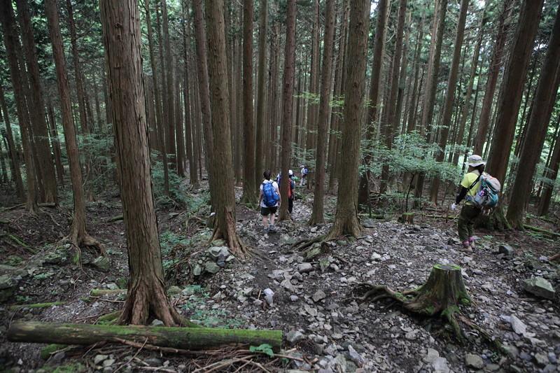 IMG_7374川苔山登山