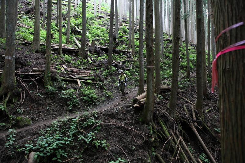 IMG_7381川苔山登山