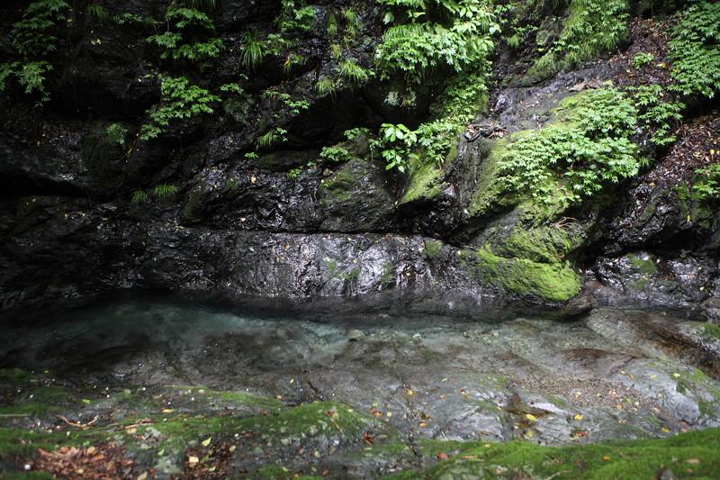 IMG_7289川苔山登山