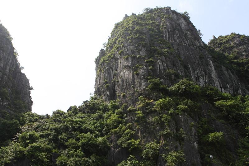 IMG_7653ベトナム旅行・ハノイにて