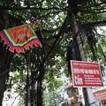 写真: IMG_8119ベトナム旅行・ハノイにて