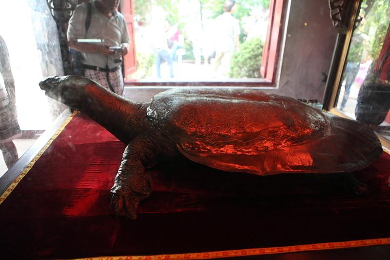 IMG_8534ベトナム旅行・ハノイにて