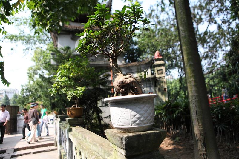 IMG_8537ベトナム旅行・ハノイにて