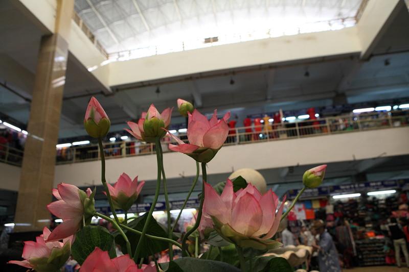 IMG_8643ベトナム旅行・ハノイにて
