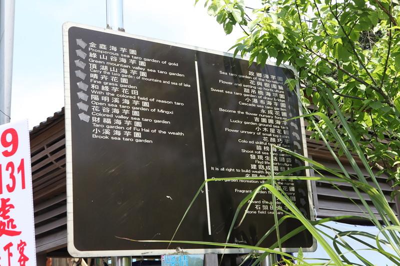 IMG_0298台湾陽明山_海芋祭と七星山登山