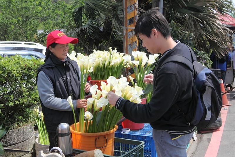 IMG_0340台湾陽明山_海芋祭と七星山登山
