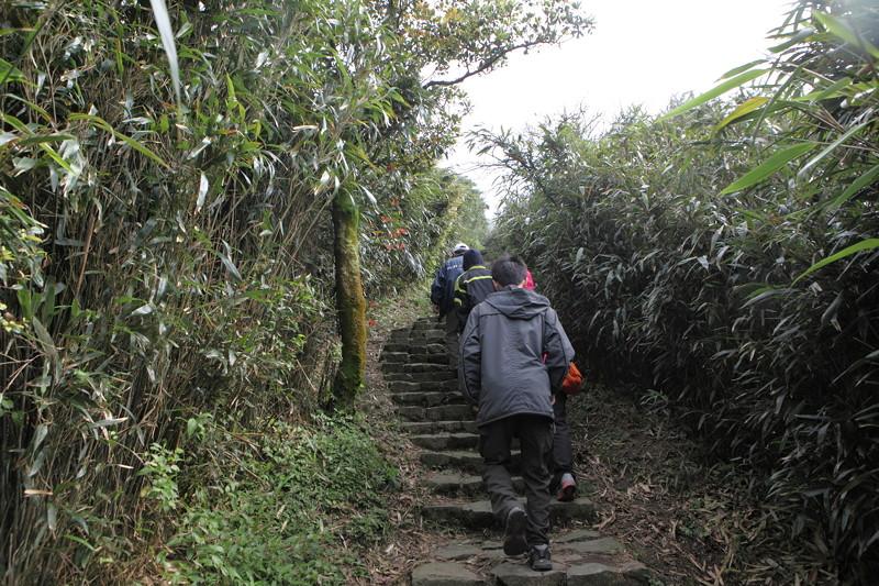 IMG_0414台湾陽明山_海芋祭と七星山登山