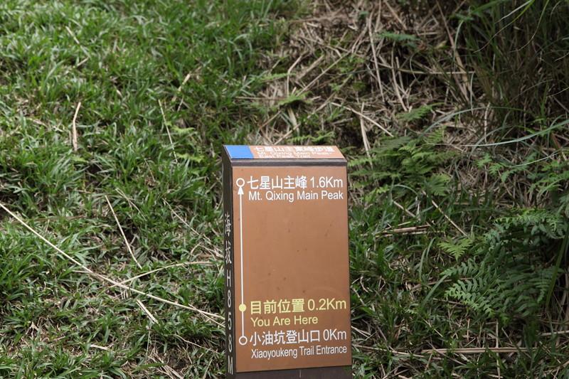 IMG_0416台湾陽明山_海芋祭と七星山登山