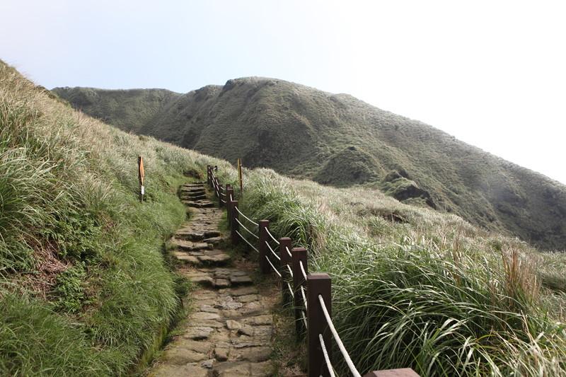 IMG_0419台湾陽明山_海芋祭と七星山登山
