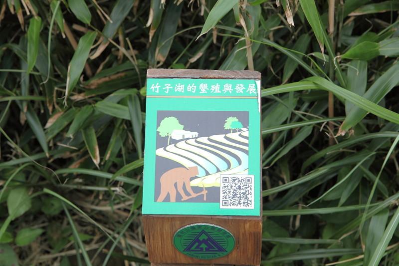 IMG_0429台湾陽明山_海芋祭と七星山登山