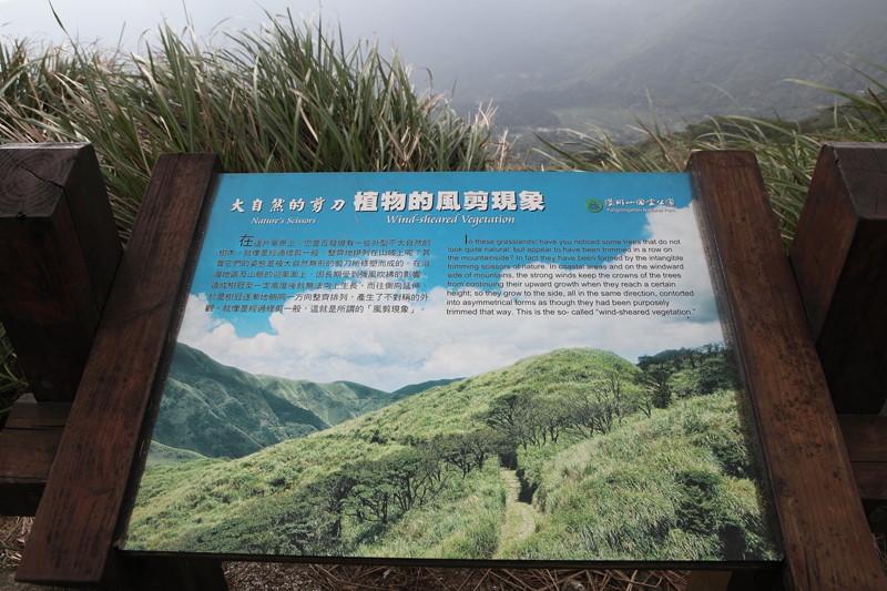 IMG_0435台湾陽明山_海芋祭と七星山登山