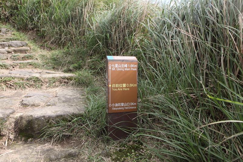 IMG_0437台湾陽明山_海芋祭と七星山登山