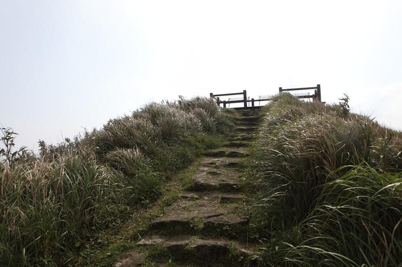 IMG_0442台湾陽明山_海芋祭と七星山登山
