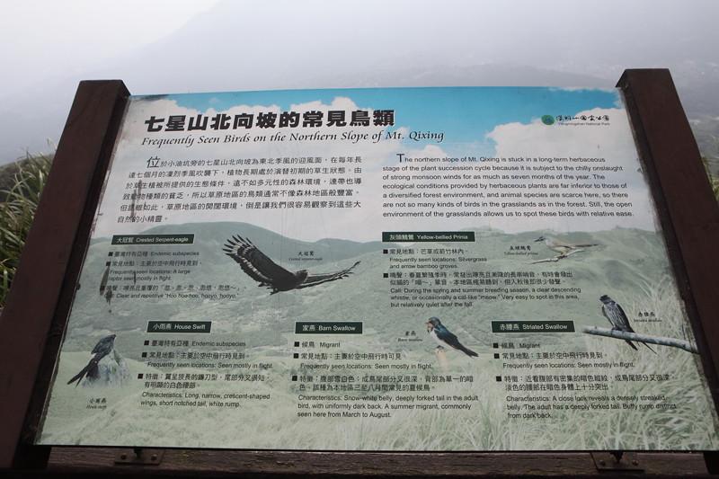 IMG_0444台湾陽明山_海芋祭と七星山登山