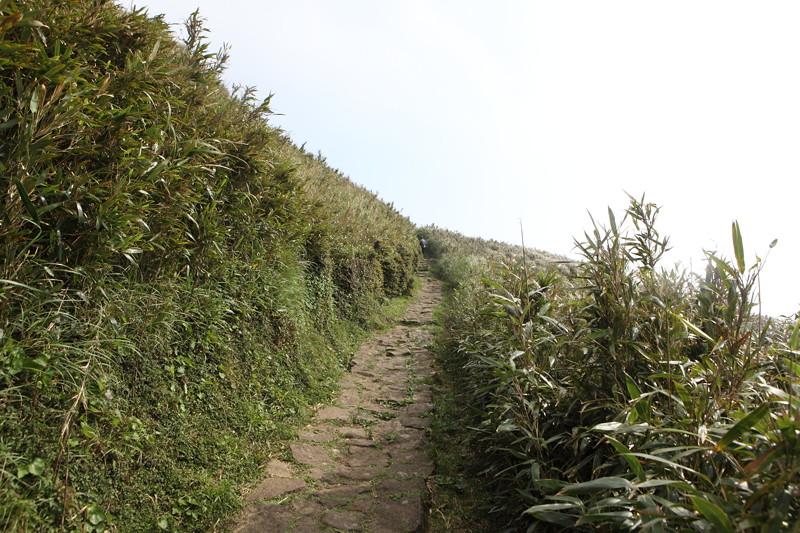 IMG_0449台湾陽明山_海芋祭と七星山登山