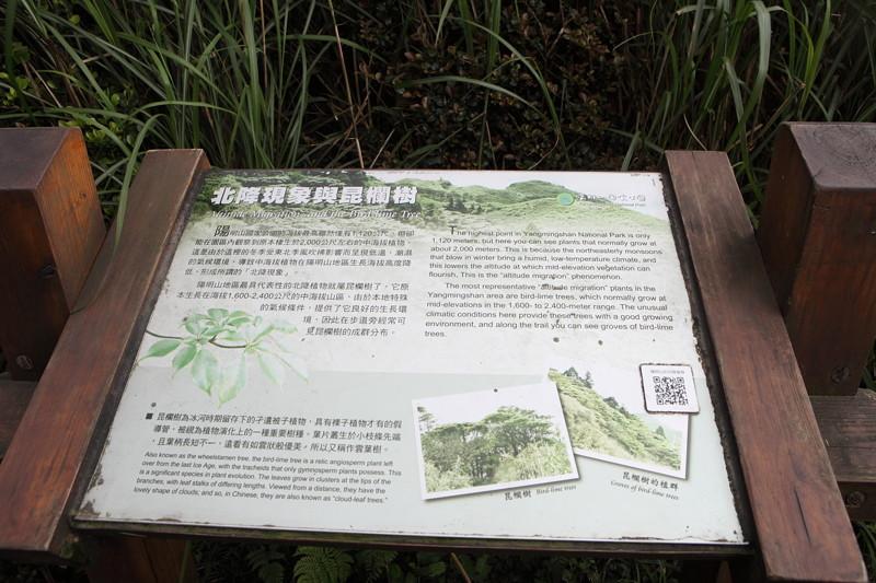 IMG_0451台湾陽明山_海芋祭と七星山登山