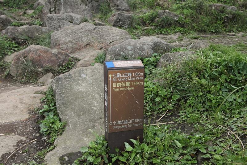 IMG_0453台湾陽明山_海芋祭と七星山登山