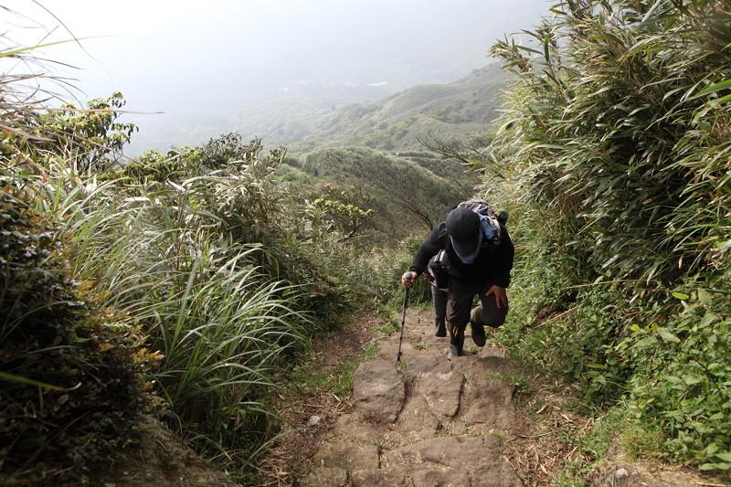 IMG_0481台湾陽明山_海芋祭と七星山登山