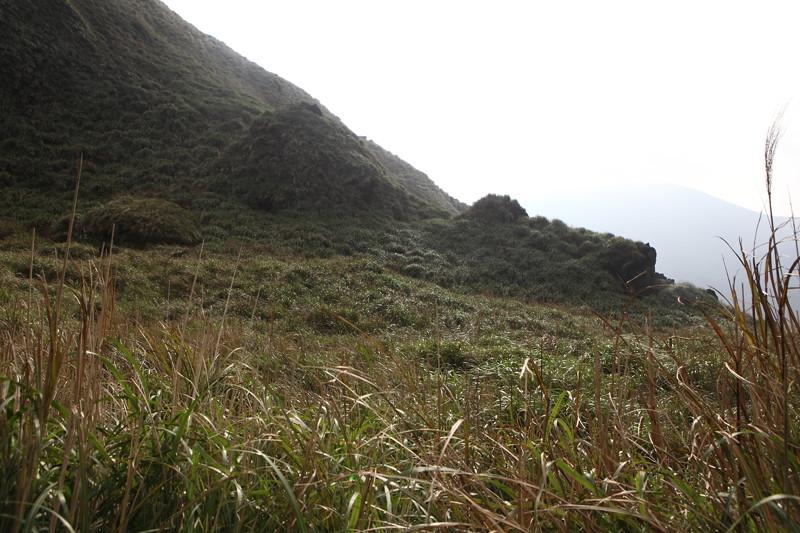 IMG_0490台湾陽明山_海芋祭と七星山登山