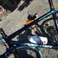 Photos: 自転車とネコ