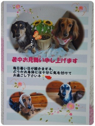 20120731 ohちゃんから♪