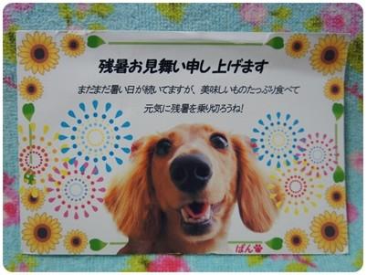 20120831 あかねさん&ぱんちゃん、ありがと☆