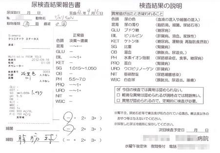 20120916 病院(おちっこ検査)