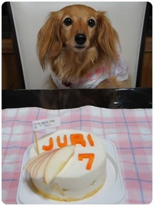 20120923 7歳おめでとう!!