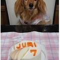 写真: 20120923 7歳おめでとう!!